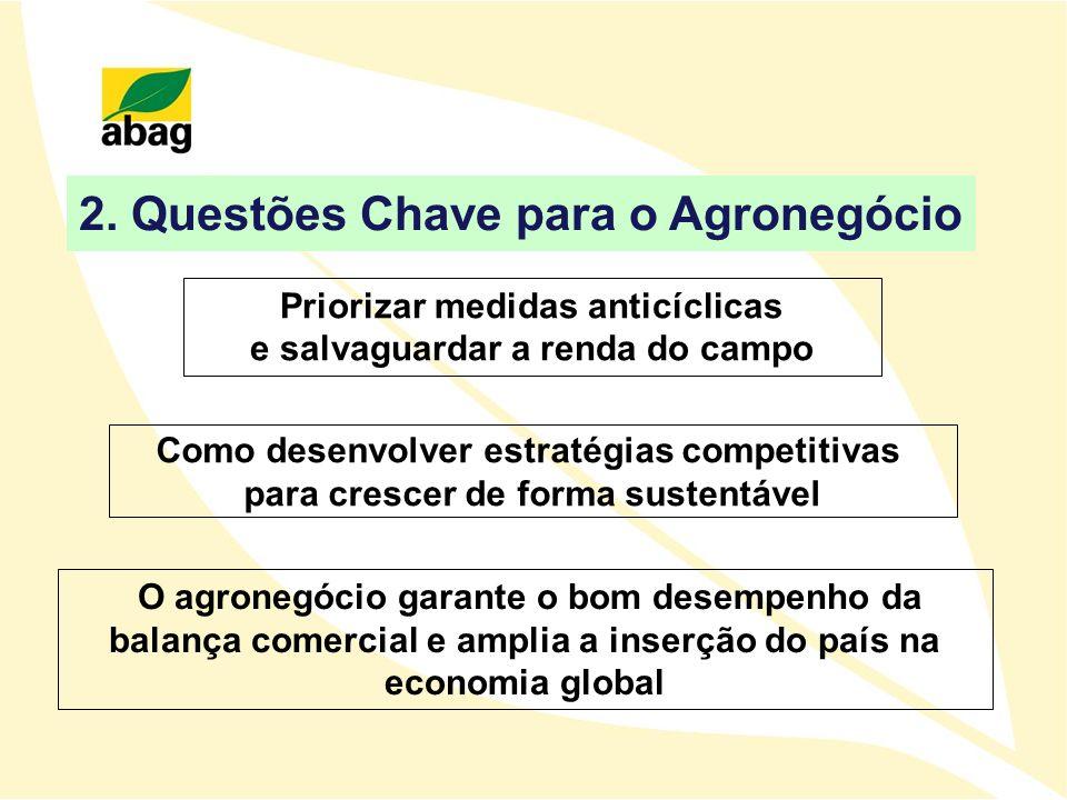 2. Questões Chave para o Agronegócio