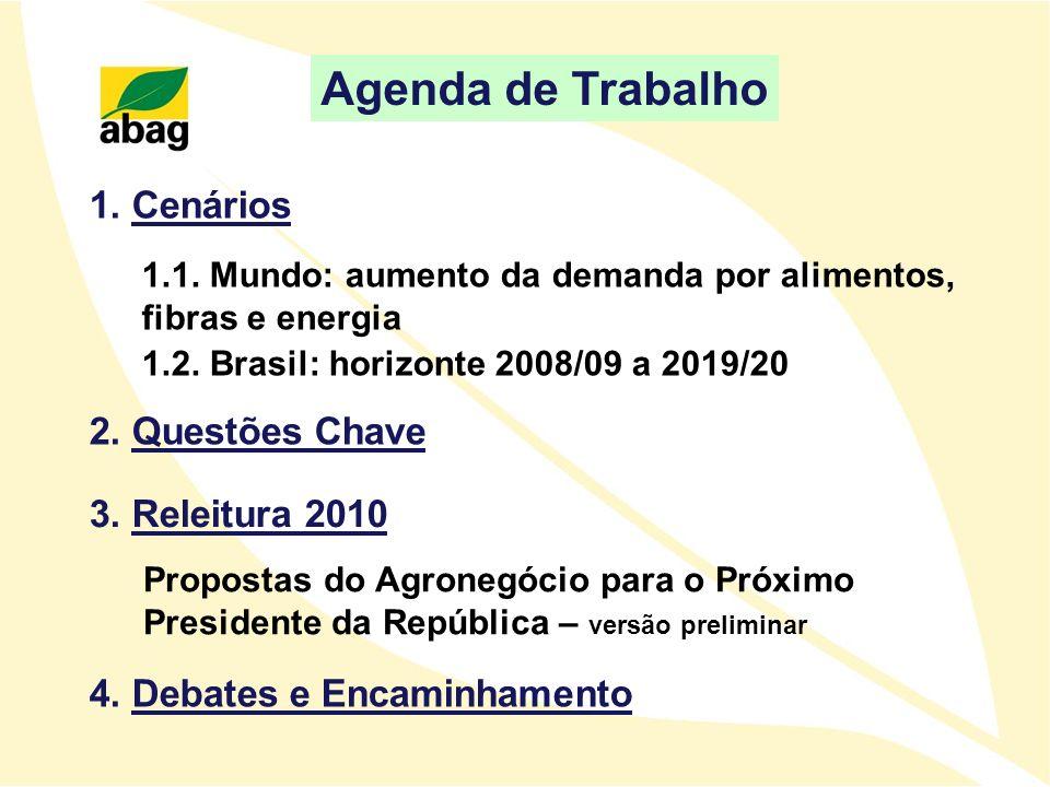 Agenda de Trabalho 1. Cenários 2. Questões Chave 3. Releitura 2010