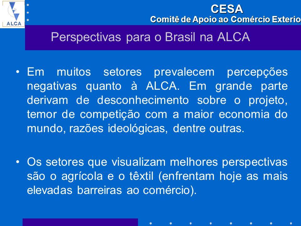 Perspectivas para o Brasil na ALCA