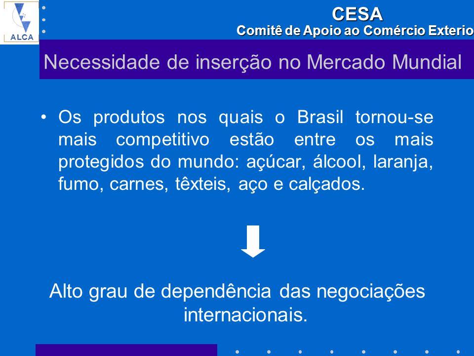 Necessidade de inserção no Mercado Mundial