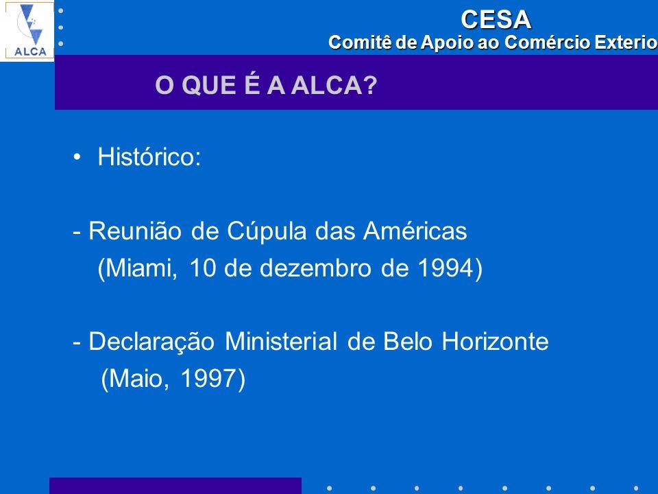 O QUE É A ALCA Histórico: - Reunião de Cúpula das Américas. (Miami, 10 de dezembro de 1994) - Declaração Ministerial de Belo Horizonte.