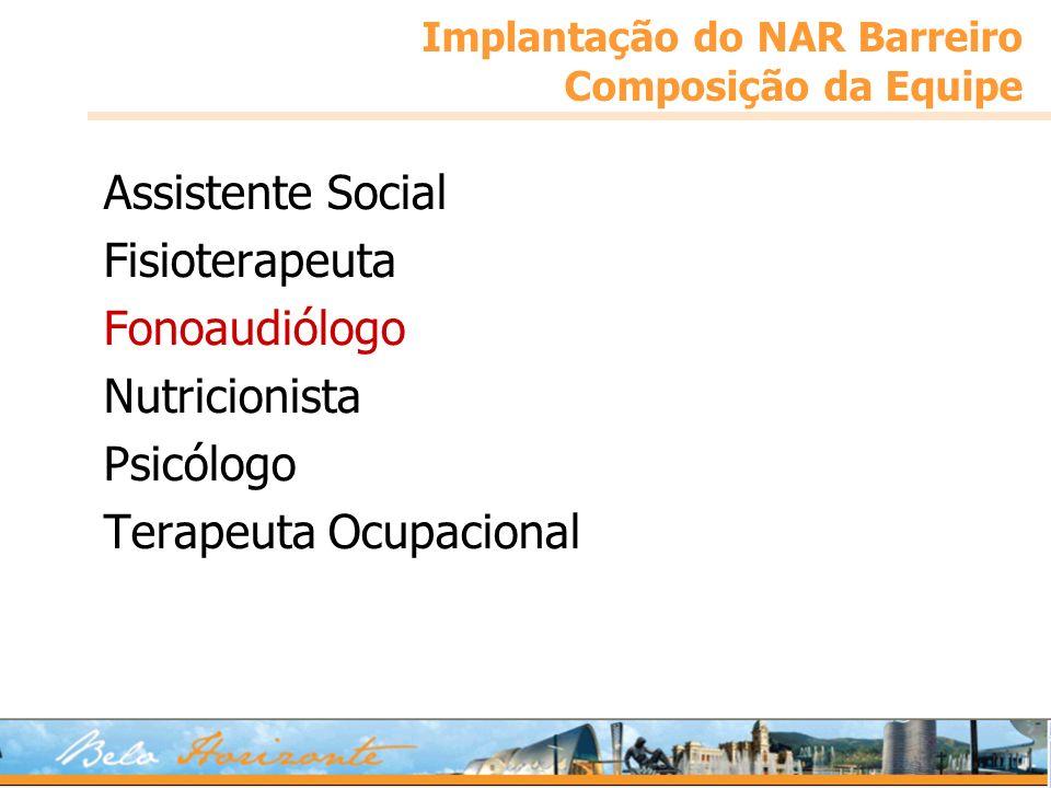 Implantação do NAR Barreiro Composição da Equipe