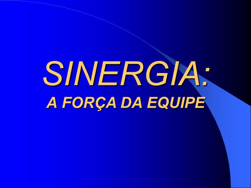SINERGIA: A FORÇA DA EQUIPE