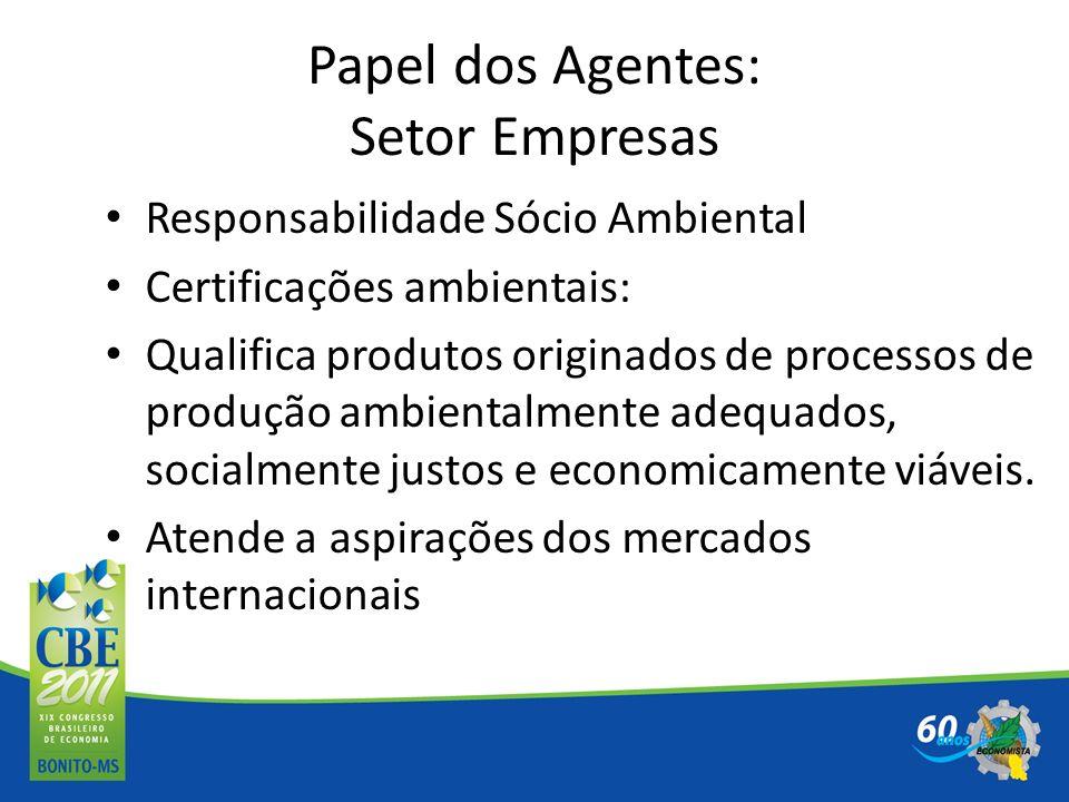 Papel dos Agentes: Setor Empresas