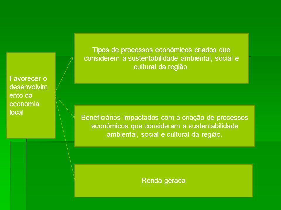 Tipos de processos econômicos criados que considerem a sustentabilidade ambiental, social e cultural da região.