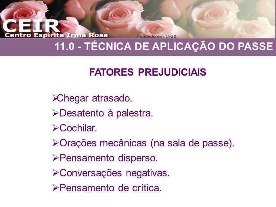 11.0 - TÉCNICA DE APLICAÇÃO DO PASSE