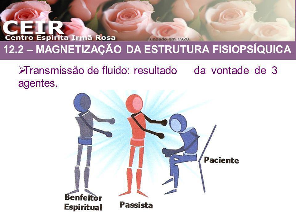 12.2 – MAGNETIZAÇÃO DA ESTRUTURA FISIOPSÍQUICA