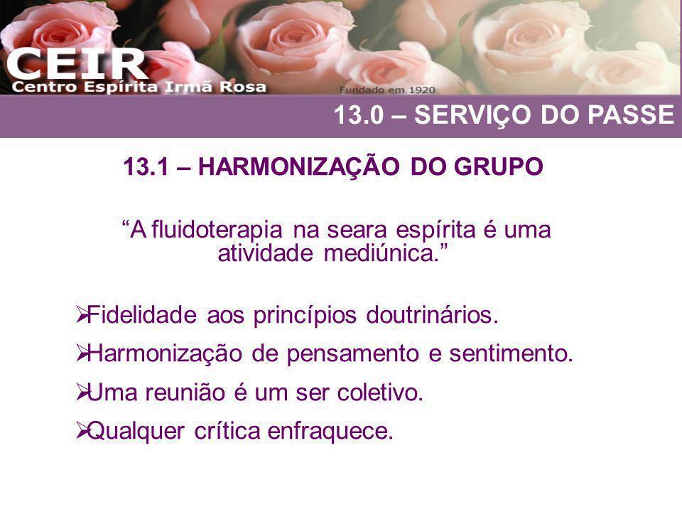 13.1 – HARMONIZAÇÃO DO GRUPO