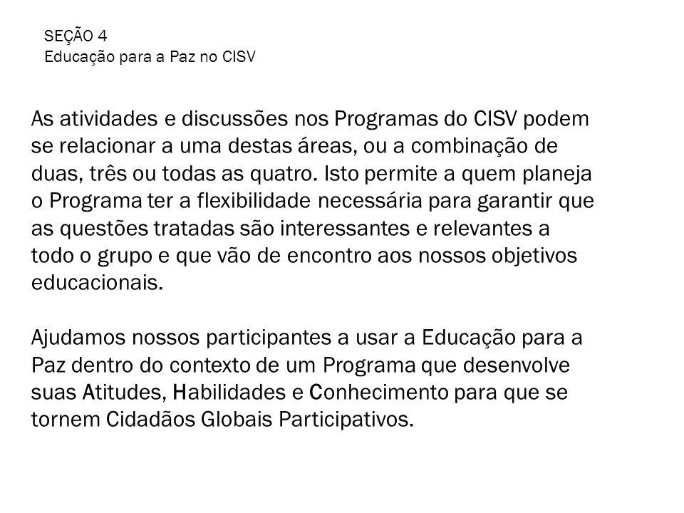 As atividades e discussões nos Programas do CISV podem