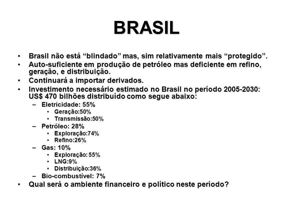 BRASIL Brasil não está blindado mas, sim relativamente mais protegido .