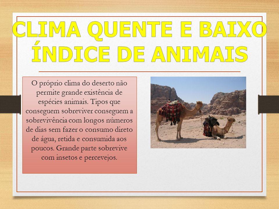 CLIMA QUENTE E BAIXO ÍNDICE DE ANIMAIS