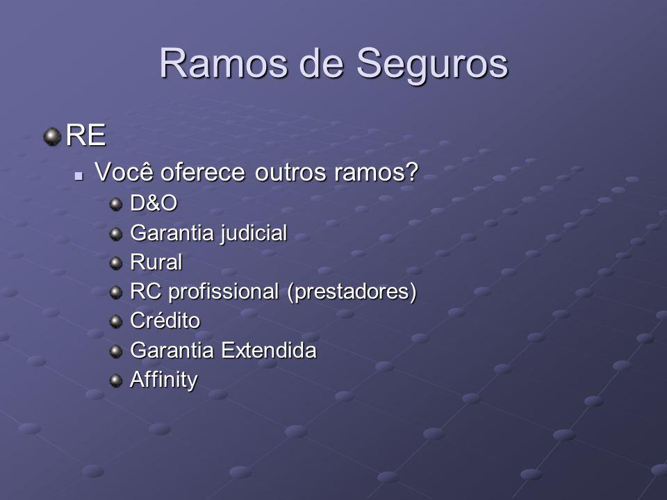 Ramos de Seguros RE Você oferece outros ramos D&O Garantia judicial