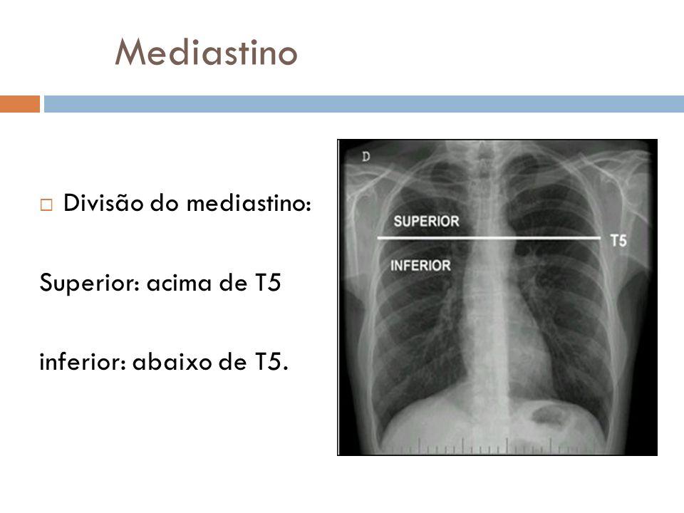 Mediastino Divisão do mediastino: Superior: acima de T5