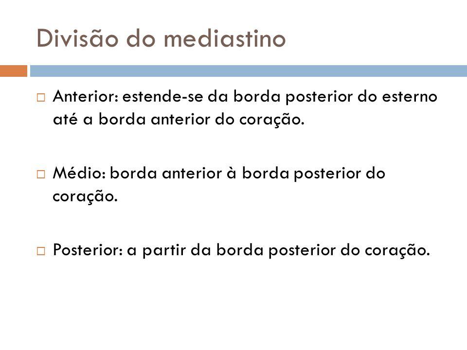 Divisão do mediastinoAnterior: estende-se da borda posterior do esterno até a borda anterior do coração.