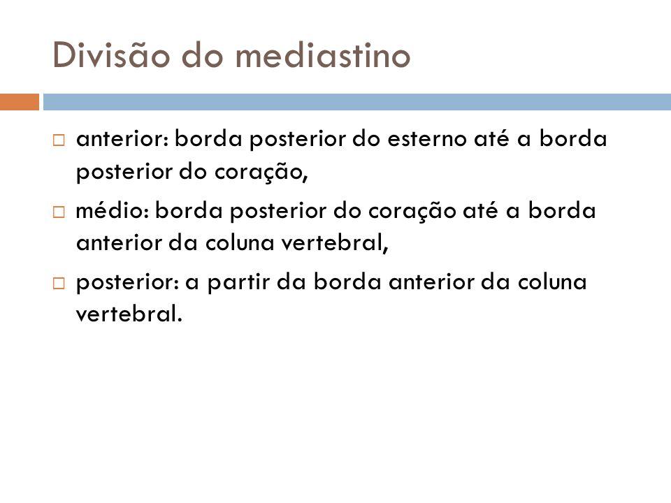 Divisão do mediastinoanterior: borda posterior do esterno até a borda posterior do coração,