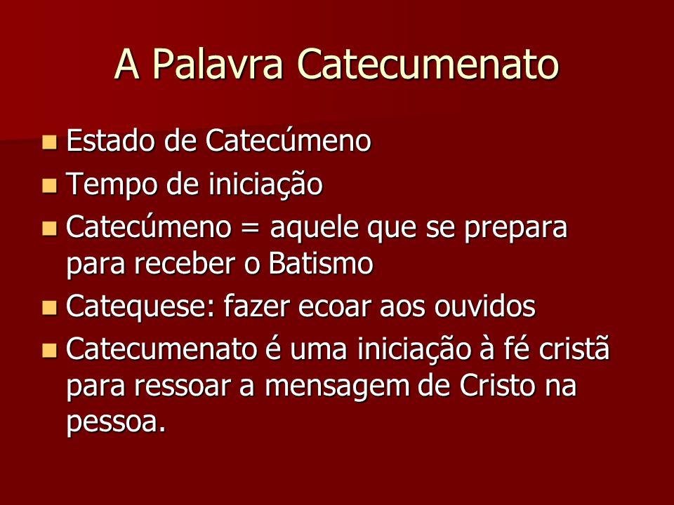 A Palavra Catecumenato