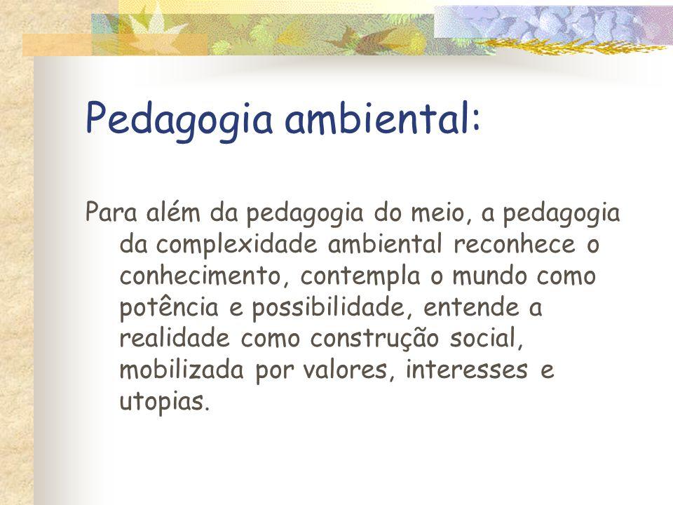 Pedagogia ambiental: