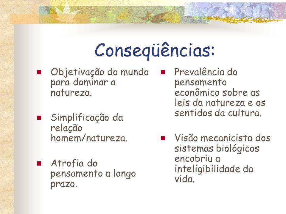 Conseqüências: Objetivação do mundo para dominar a natureza.