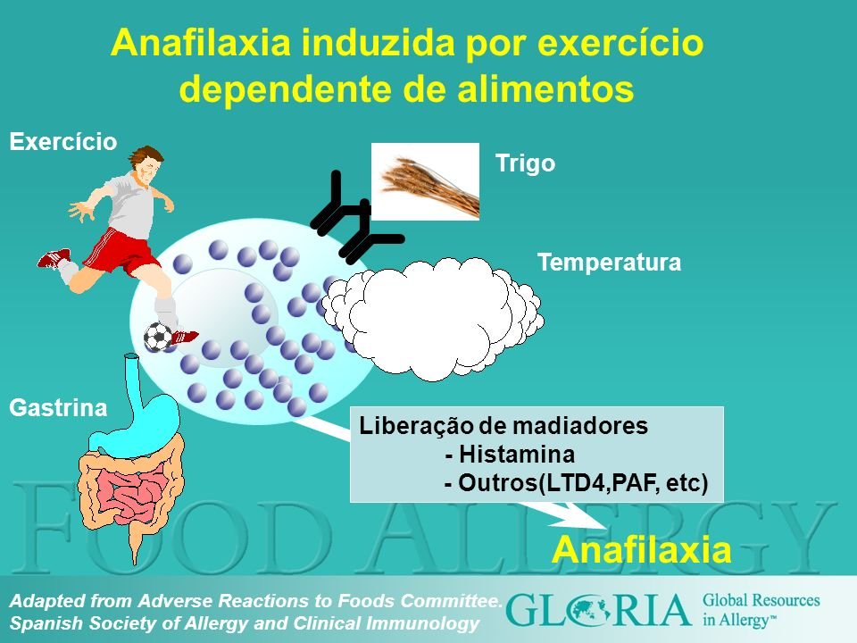 Anafilaxia induzida por exercício dependente de alimentos