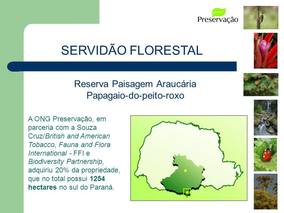 Reserva Paisagem Araucária Papagaio-do-peito-roxo