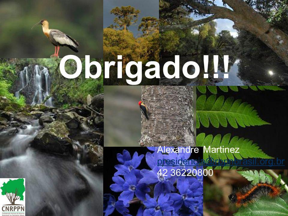 Obrigado!!! Alexandre Martinez presidencia@rppnbrasil.org.br