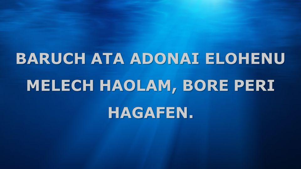 BARUCH ATA ADONAI ELOHENU MELECH HAOLAM, BORE PERI HAGAFEN.