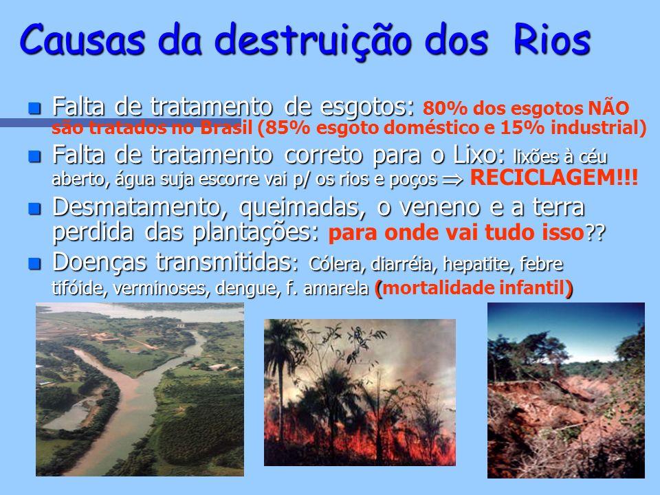 Causas da destruição dos Rios