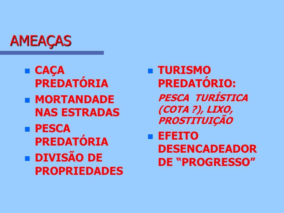 AMEAÇAS CAÇA PREDATÓRIA MORTANDADE NAS ESTRADAS PESCA PREDATÓRIA