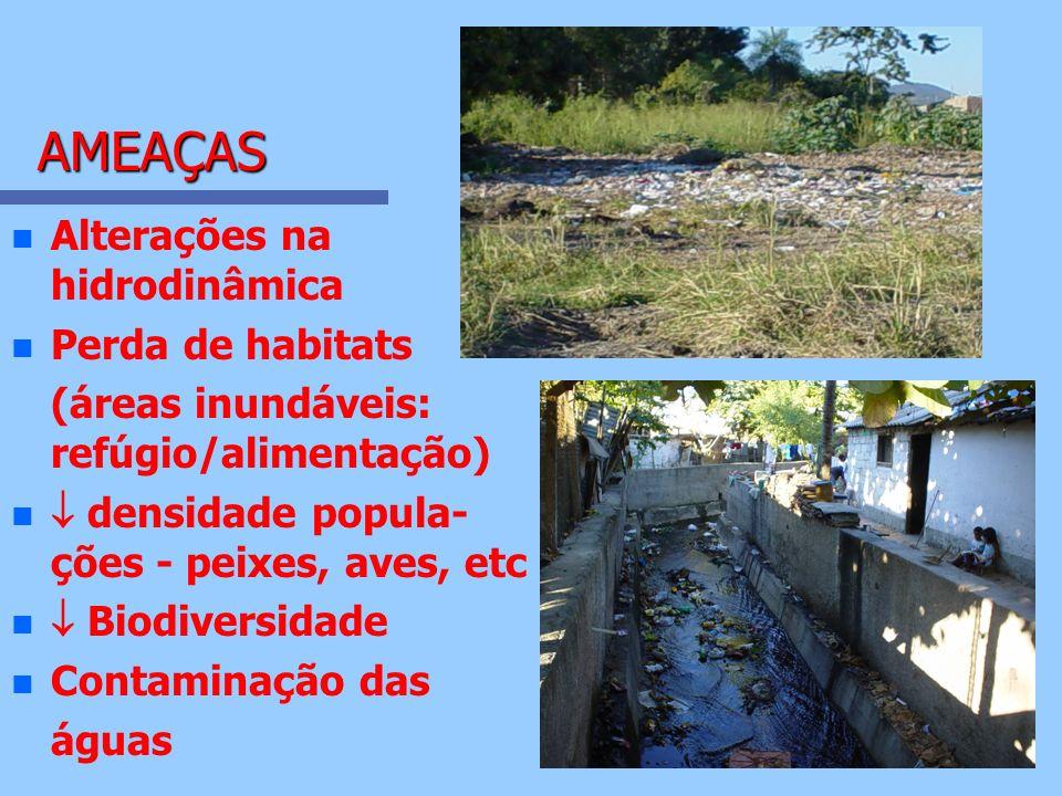 AMEAÇAS Alterações na hidrodinâmica Perda de habitats
