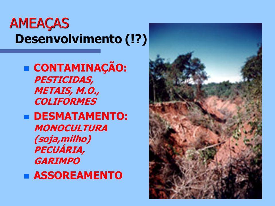 AMEAÇAS Desenvolvimento (! )