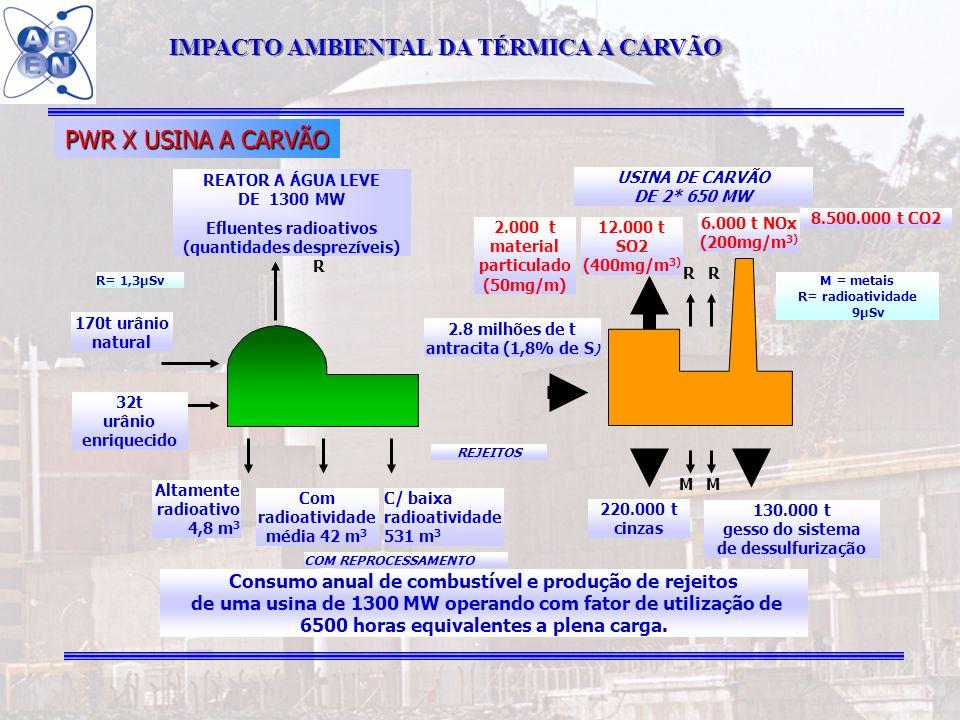 IMPACTO AMBIENTAL DA TÉRMICA A CARVÃO