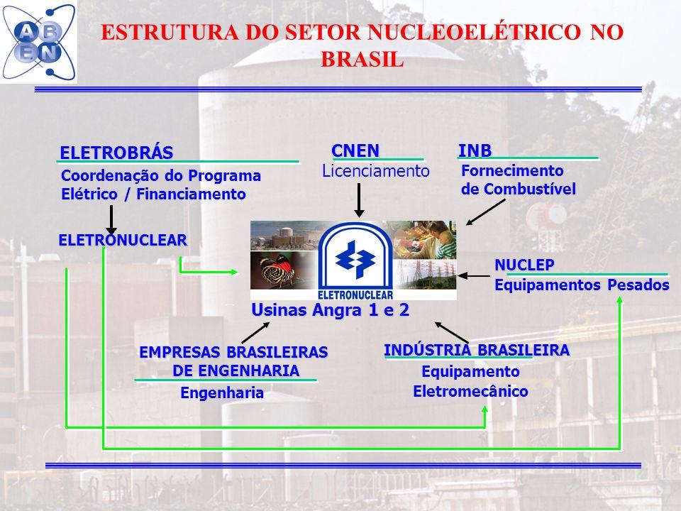 ESTRUTURA DO SETOR NUCLEOELÉTRICO NO BRASIL