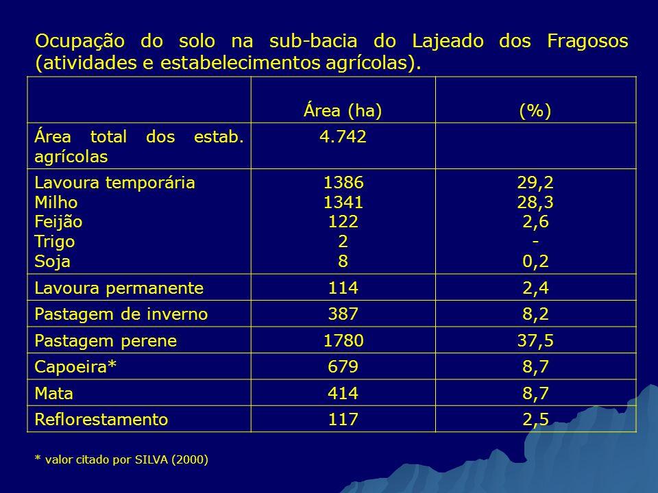 Ocupação do solo na sub-bacia do Lajeado dos Fragosos (atividades e estabelecimentos agrícolas).
