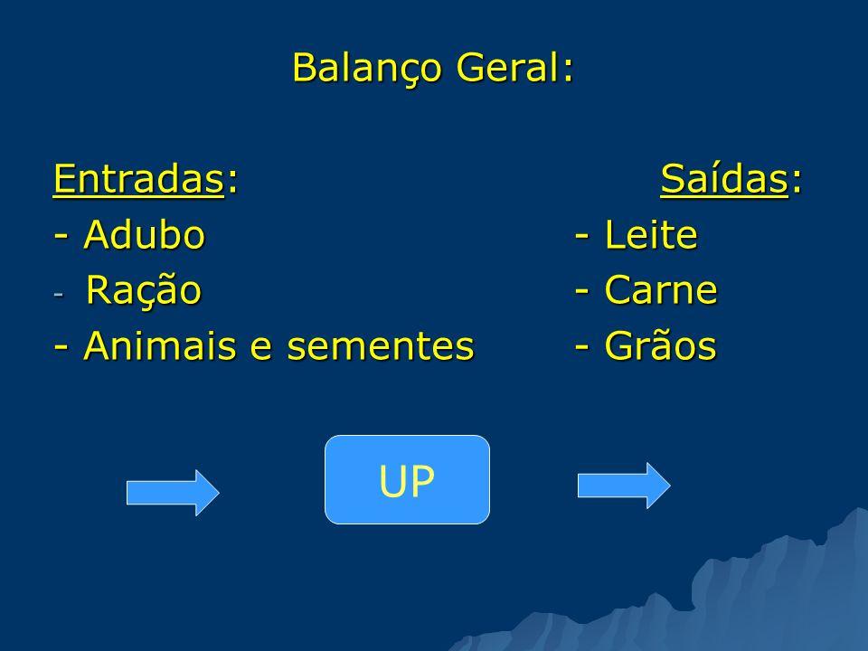 UP Balanço Geral: Entradas: Saídas: - Adubo - Leite Ração - Carne