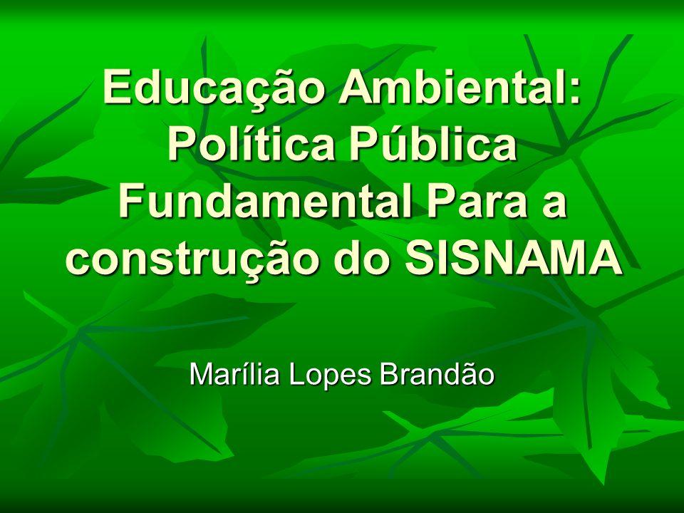 Educação Ambiental: Política Pública Fundamental Para a construção do SISNAMA