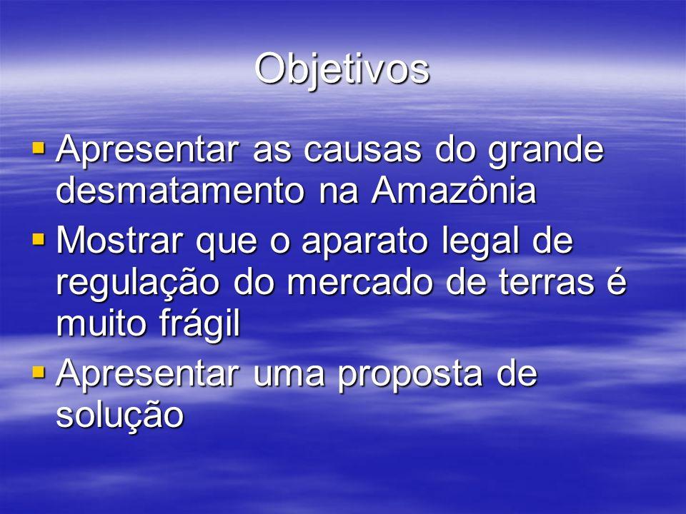 Objetivos Apresentar as causas do grande desmatamento na Amazônia