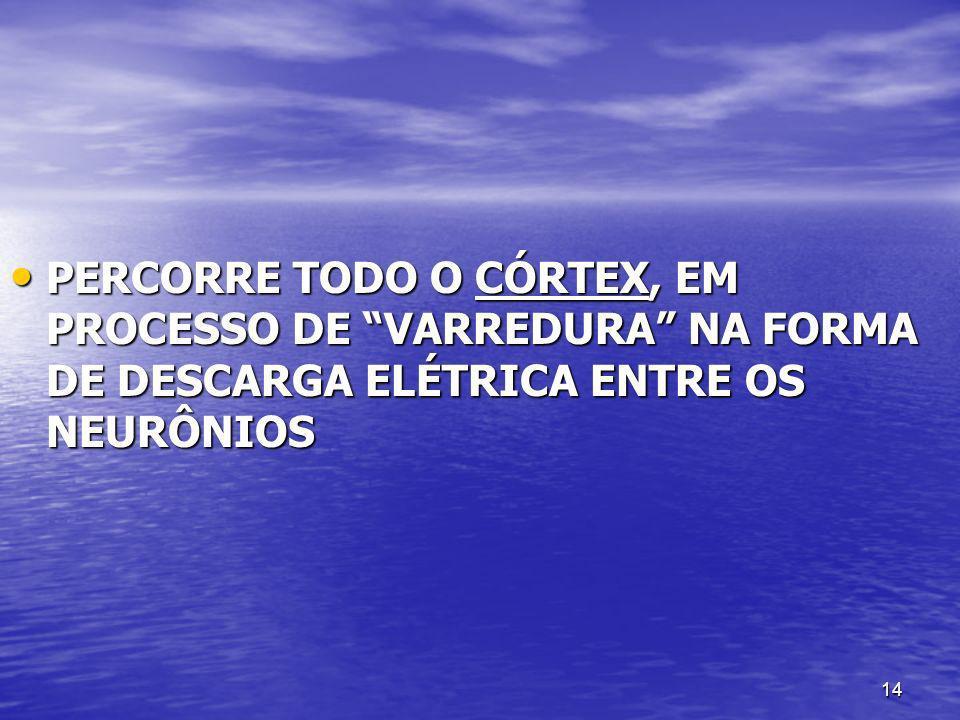 PERCORRE TODO O CÓRTEX, EM PROCESSO DE VARREDURA NA FORMA DE DESCARGA ELÉTRICA ENTRE OS NEURÔNIOS