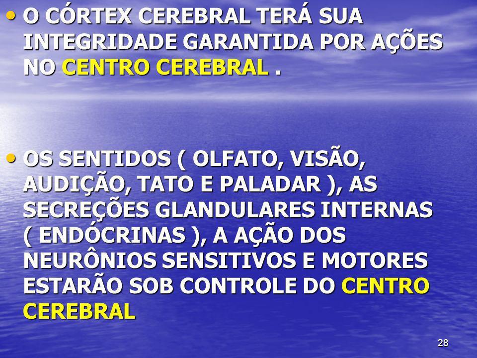 O CÓRTEX CEREBRAL TERÁ SUA INTEGRIDADE GARANTIDA POR AÇÕES NO CENTRO CEREBRAL .