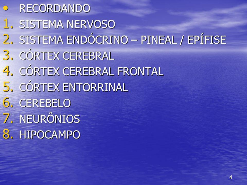 RECORDANDOSISTEMA NERVOSO. SISTEMA ENDÓCRINO – PINEAL / EPÍFISE. CÓRTEX CEREBRAL. CÓRTEX CEREBRAL FRONTAL.