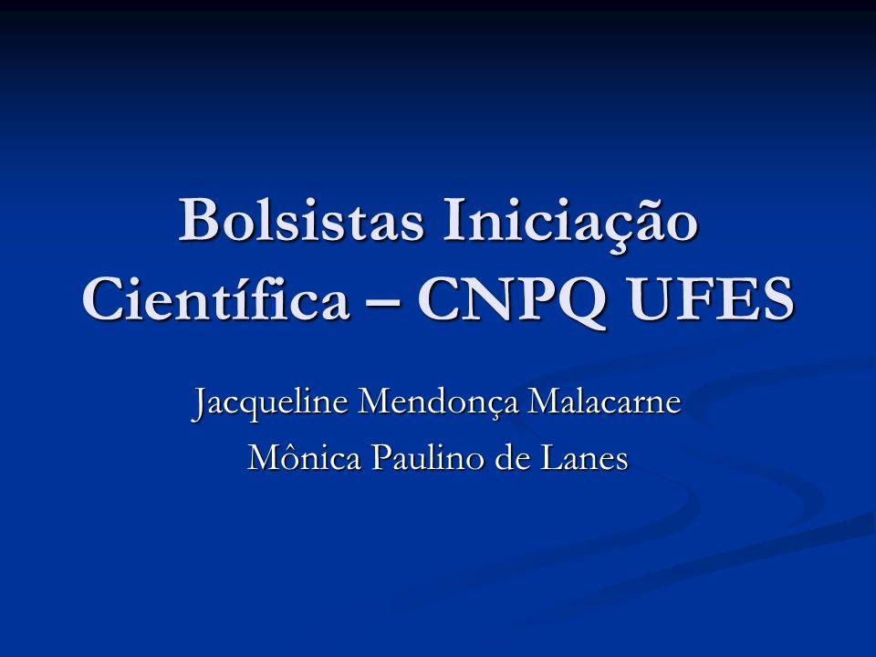 Bolsistas Iniciação Científica – CNPQ UFES
