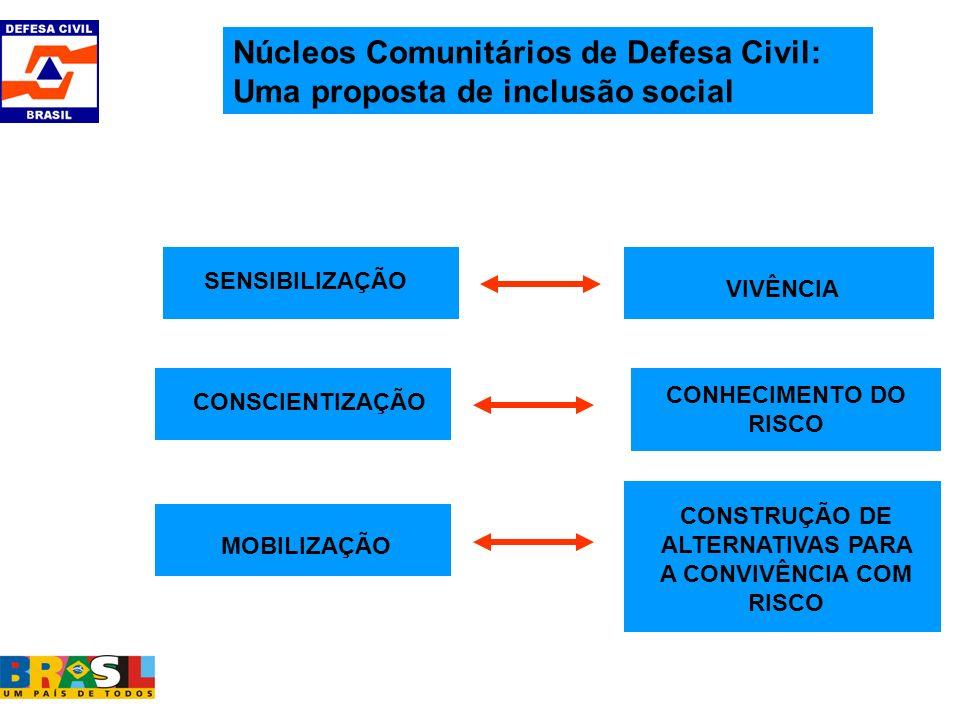 CONSTRUÇÃO DE ALTERNATIVAS PARA A CONVIVÊNCIA COM RISCO