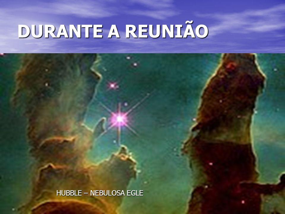 DURANTE A REUNIÃO HUBBLE – NEBULOSA EGLE