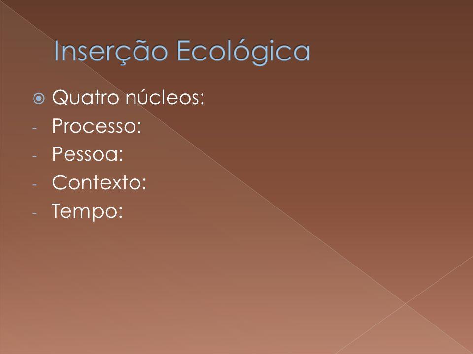 Inserção Ecológica Quatro núcleos: Processo: Pessoa: Contexto: Tempo: