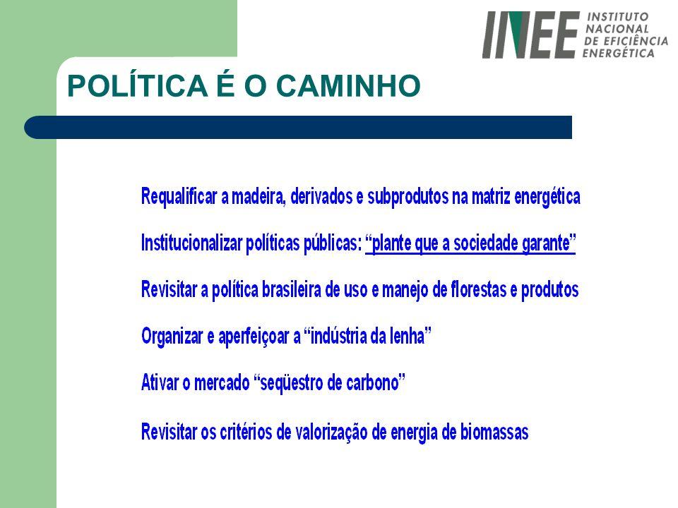 POLÍTICA É O CAMINHO