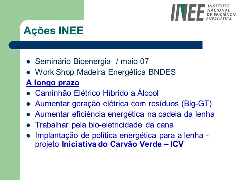 Ações INEE Seminário Bioenergia / maio 07