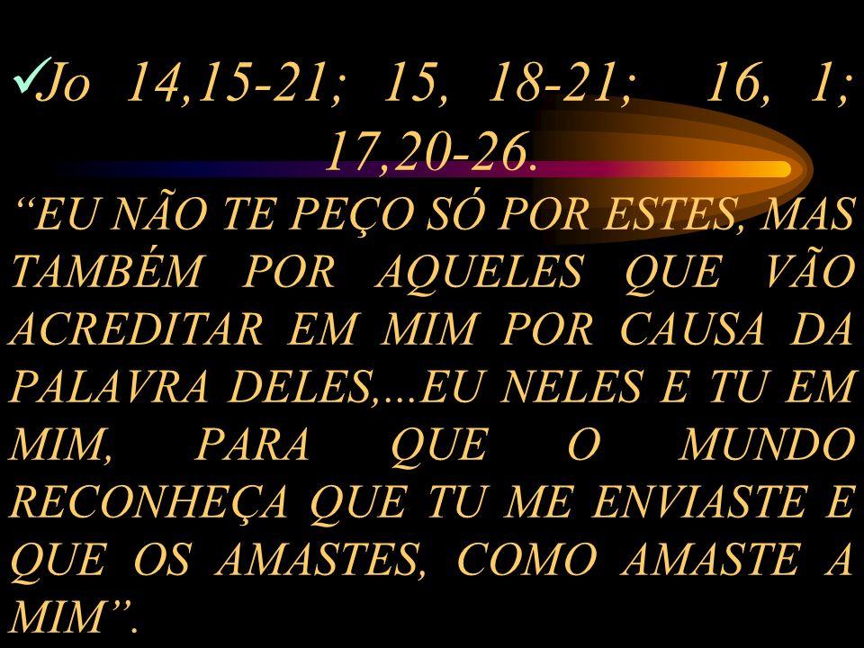 Jo 14,15-21; 15, 18-21; 16, 1; 17,20-26.