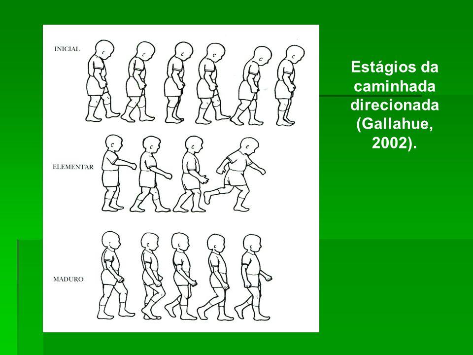 Estágios da caminhada direcionada (Gallahue, 2002).