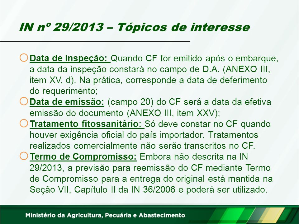 IN nº 29/2013 – Tópicos de interesse