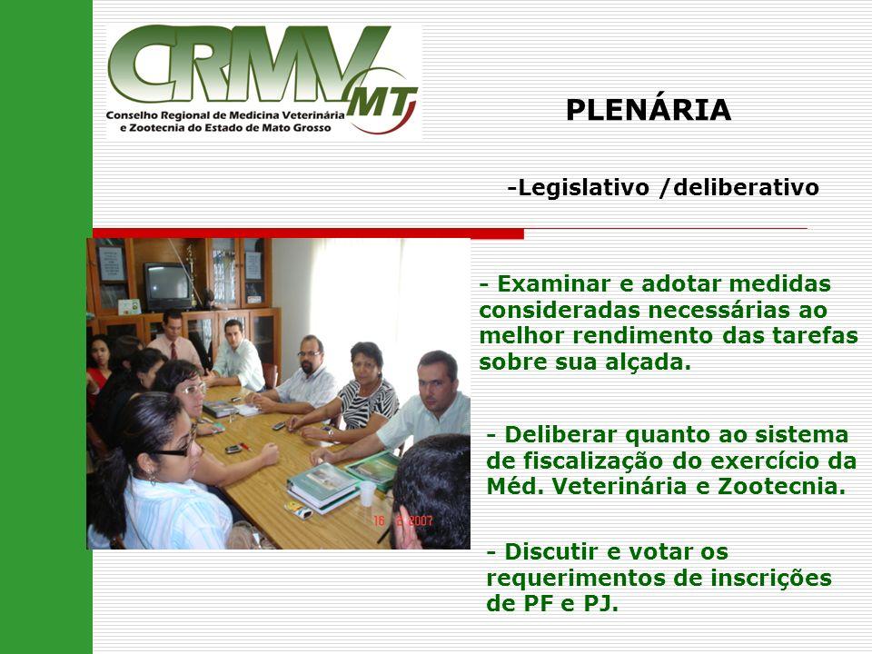 PLENÁRIA -Legislativo /deliberativo