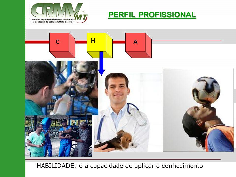 PERFIL PROFISSIONAL C H A